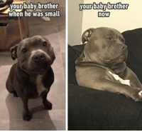 Dank, All The, and Baby: your baby  y brother  your babybrother  when he was small  now  o0s where did all the cuteness go?