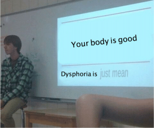 dysphoria: Your body is good  Dysphoria is  just mean