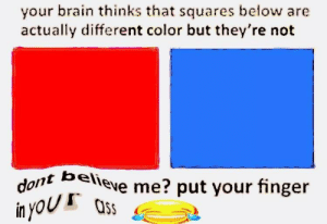 Ass, Brain, and Color: your brain thinks that squares below are  actually different color but they're not  ont believe me? put your finger  in you 0s Put it in your ass😂💯