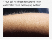 """<p>The best words to hear on the other end of the line via /r/dank_meme <a href=""""http://ift.tt/2fqO0Uz"""">http://ift.tt/2fqO0Uz</a></p>: """"Your call has been forwarded to an  automatic voice messaging system"""" <p>The best words to hear on the other end of the line via /r/dank_meme <a href=""""http://ift.tt/2fqO0Uz"""">http://ift.tt/2fqO0Uz</a></p>"""