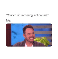 "Chris Pratt, Crush, and Girl Memes: Your crush is coming, act natural.""  Me  @basicbitch chris pratt 😍"