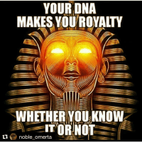 Turn to science and learn about yourself... you are connected to certain elements and certain compounds you shouldn't eat as an Afrikan. Learn to understand and seek the truth so you can be the best version of you can be always. Repost @noble_omerta with @repostapp: YOUR DNA  MAKES YOUROYALTY  WHETHER YOU KNOW  IT OR NOT  ti  noble omerta Turn to science and learn about yourself... you are connected to certain elements and certain compounds you shouldn't eat as an Afrikan. Learn to understand and seek the truth so you can be the best version of you can be always. Repost @noble_omerta with @repostapp