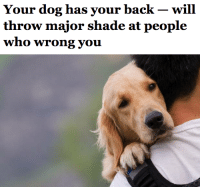 "Dogs, Food, and Shade: Your dog has your back - will  who Wrong you <p><a href=""http://salon.tumblr.com/post/121597775178/new-research-led-by-kazuo-fujita-of-kyoto"" class=""tumblr_blog"">salon</a>:</p>  <blockquote><blockquote><p>New research led by Kazuo Fujita of Kyoto University <a href=""http://www.huffingtonpost.com/2015/06/15/dogs-owners-enemy_n_7571530.html?utm_hp_ref=green&amp;ir=Green"">has found that your dog is the best wing man/woman</a>. The researchers tested three groups of 18 dogs by putting them in rooms with their owners as well as two strangers. The owners were tasked with opening a box, and solicited help from the two other people in the room (sometimes they would help and sometimes they would refuse). After watching their owners either be rebuffed or aided, the dogs were offered food by the strangers — and were much more likely to ignore the stranger who had been unkind to their owner.<br/></p></blockquote><p><b><a href=""http://www.salon.com/2015/06/15/your_dog_has_your_back_%E2%80%94_will_throw_major_shade_at_people_who_wrong_you/?utm_source=Tumblr&amp;utm_medium=Tumblr%20Share&amp;utm_campaign=Tumblr"">In a study, dogs refused food from people who had slighted their owners</a></b></p></blockquote>"