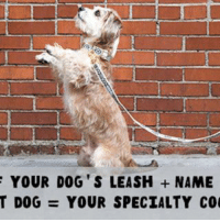 Memes, Best, and Blue: YOUR DOG S LEASH NAME  T DOG YOUR SPECIALTY CO What's your specialty cocktail? Tell us in the comments 👇 literallytellus . Get consistent pupdates from the wacky doggo universe that is Bark by signing up for our emails! Follow ruv.me-barkemail (in bio) and get the best content a dog could ask for sent straight to your inbox! . FOR THE RECORD: my cocktail is the Blue Riley! . ft @thedoginabag