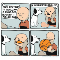 🕵🏻Secrets revealed (by @nathanwpyle ): YOUR DOG TRIED  TO SWALLOW  A GOURD, WE  REMOVED IT  FROM HIS SKULL  CU LEARNED THIS FROM ME  ATHANWPYLE BUZZFEED 🕵🏻Secrets revealed (by @nathanwpyle )