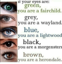 Family, Memes, and Black: your eyes are:  green,  you are a fairchild  grey,  you are a wayland  blue,  you are a lightwood  black,  you are a morgenstern  brown  you are a herondale. Comment your family below ⬇  -Dumblesnape  ( also check out our admin contest!!! )