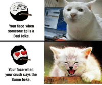 Twitter: BLB247 Snapchat : BELIKEBRO.COM belikebro sarcasm meme Follow @be.like.bro: Your face when  Someone tells a  Bad Joke.  Your face when  your crush says the  Same Joke. Twitter: BLB247 Snapchat : BELIKEBRO.COM belikebro sarcasm meme Follow @be.like.bro