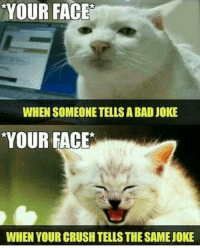 Happens 😂😂😂: YOUR FACE  WHEN SOMEONETELLS A BAD JOKE  YOUR FACE  WHEN YOUR CRUSH TELLSTHESAMEJOKE Happens 😂😂😂