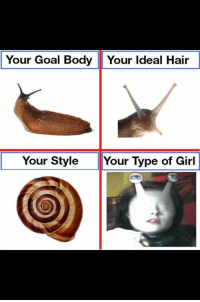 Snail meme~ the kush docta: Your Goal Body Your ldeal Hair  Your Style Your Type of Girl Snail meme~ the kush docta