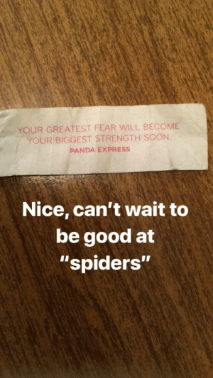 "Girls like a guy with skills: YOUR GREATEST FEAR WILL BECOME  YOUR BIGGEST STRENGTH SOON.  PANDA EXPRESS  Nice, can't wait to  be good at  ""spiders""  1I Girls like a guy with skills"