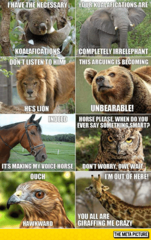 Baby Don't Herd Mehttp://advice-animal.tumblr.com/: YOUR KOALAFICATIONS ARE  I HAVE THE NECESSARY  KOALAFICATIONS  DON'T LISTEN TO HIM  COMPLETELY IRRELEPHANT  THIS ARGUING IS BECOMING  UNBEARABLE!  HE'S LION  INDEED  HORSE PLEASE. WHEN DO YOU  EVER SAY SOMETHING SMART?  DON'T WORRY, OWL WAIT.  IT'S MAKING MY VOICE HORSE  I'M OUT OF HERE!  OUCH  YOU ALL ARE  GIRAFFING ME CRAZY  HAWKWARD  THE META PICTURE Baby Don't Herd Mehttp://advice-animal.tumblr.com/