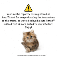 <p>E R R O R</p>: Your mental capacity has registered as  insufficient for comprehending the true nature  of this meme, so we've displayed a cute kittenM  instead that is more suited to your intellect  Enjoy!  This message courtesy of the Meme Review Agency for Public Safety <p>E R R O R</p>