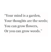 "the seeds: ""Your mind is a garden,  Your thoughts are the seeds;  You can grow flowers,  Or you can grow weeds."""