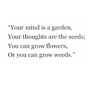 "https://iglovequotes.net/: ""Your mind is a garden,  Your thoughts are the seeds;  You can grow flowers,  Or you can grow weeds."" https://iglovequotes.net/"
