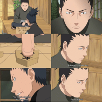 Your mind is elsewhere  Are you scared  Shikamaru, it's yourturn.  I'm not scared. Q - Do you have any pets?
