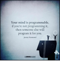 Memes, Mind, and Programming: Your mind is programmable,  Your mind is programmable,  if you're not programming it,  then someone else will  program it for you.  Jeremy Hammond  THEMINDUNLEASHED