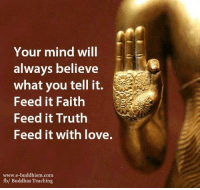 Buddha: Your mind will  always believe  what you tell it.  Feed it Faith  Feed it Truth  Feed it with love.  www.e-buddhism com  fbl Buddhas Teaching