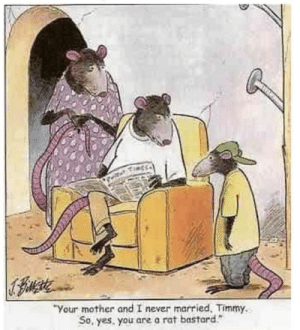"Never, Yes, and Mother: ""Your mother and I never married. Timmy.  So, yes. you are a rat bastard"