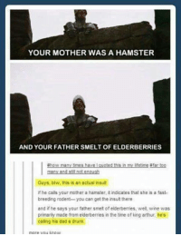 Arthur, Dad, and Drunk: YOUR MOTHER WAS A HAMSTER  AND YOUR FATHER SMELT OF ELDERBERRIES  #how many times have I guoted this in my lifetime #far too  Guys, btw, this is an actual insult  if he calls your mother a hamster, t indicates that she is a fast-  breeding rodent you can get the insult there  and if he says your father smett of elderberries, we wine was  primarity made from elderberries in the time of king arthur, he's  caling his dad a drunk  more vou know
