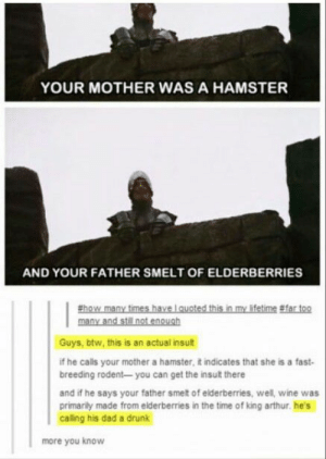 Monty Python insult: YOUR MOTHER WAS A HAMSTER  AND YOUR FATHER SMELT OF ELDERBERRIES  thow many times have lauoted this in my lifetime #far too  many and still not enough  Guys, btw, this is an actual insult  if he calls your mother a hamster, it indicates that she is a fast-  breeding rodent- you can get the insult there  and if he says your father smet of elderberries, well, wine was  primarily made from elderberries in the time of king arthur. he's  calling his dad a drunk  more you know Monty Python insult