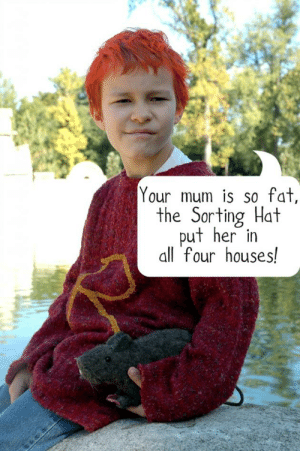 Vitamin-Ha ron-weasley-joke-680×1024: Your mum is so fat,  the Sorting Hat  put her in  all four houses! Vitamin-Ha ron-weasley-joke-680×1024