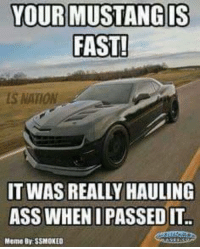 Mustang: YOUR MUSTANG IS  FAST!  NATION  IT WAS REALLY HAULING  ASS WHEN I PASSED IT  Memo BVSSMOKEDE