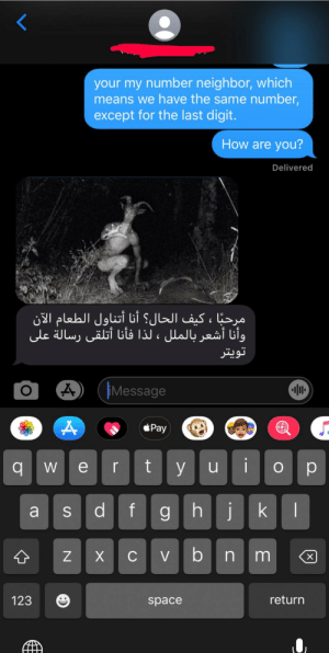 Space, Texts, and How: your my number neighbor, which  means we have the same number,  except for the last digit.  How are you?  Delivered  مرحبًا ، كيف الحال؟ أنا أتناول الطعام الآن  وأنا أشعر بالملل ، لذا فأنا أتلقى رسالة على  تويتر  iMessage  Pay  t y  we r  Op  df  ghik  a  Cvbn m  Z  123  return  space  X  S  :)  O number neighbor texts are gems