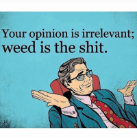 opinions are like arseholes