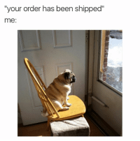 "Funny, Teen Mom, and Girl Memes: ""your order has been shipped""  me: Where is it!? @gary_from_teen_mom"