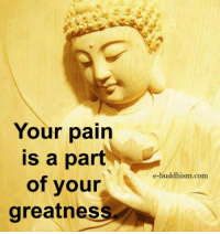 Memes, Buddhism, and Pain: Your pain  is a part  of your  greatness,  e-buddhism com