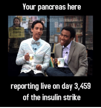 Congrats to this week's caption contest winner Everyday Insulin!: Your pancreas here  reporting live on day 3,459  of the insulin strike Congrats to this week's caption contest winner Everyday Insulin!