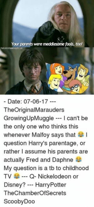 scoobydoo: Your parents were meddlesome fools, too!  Date: 07-06-17 -  TheOriginalMarauders  GrowingUpMuggle I can't be  the only one who thinks this  whenever Malfoy says that  question Harry's parentage, or  rather I assume his parents are  actually Fred and Daphne  My question is a tb to childhood  TV Q-Nickelodeon or  Disney? HarryPotter  TheChamberOfSecrets  ScoobyDoo