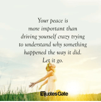Trying To Understand: Your peace is  more important than  driving yourself crazy trying  to understand why something  happened the way it did  Let it go.  E uotes Gate