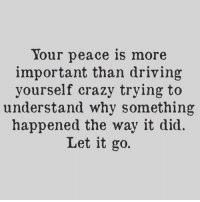 Trying To Understand: Your peace is more  important than driving  yourself crazy trying to  understand why something  happened the way it did.  Let it go.