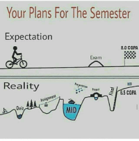 Memes, Quiz, and Reality: Your Plans For The Semester  Expectation  8.0 CGPA  Exam  Reality  583  E 6,5 CGPA  Assignment  Quiz  MID