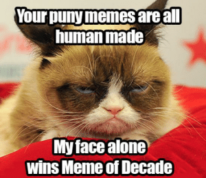 miss that Tardar Sauce: Your puny memes are all  human made  My face alone  wins Meme of Decade miss that Tardar Sauce