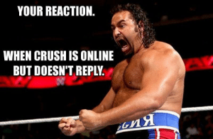 15 Hilarious WWE Memes That Perfectly Sum Up Everyday Situations: YOUR REACTION  WHEN CRUSH IS ONLINE  BUT DOESN'T REPLY 15 Hilarious WWE Memes That Perfectly Sum Up Everyday Situations