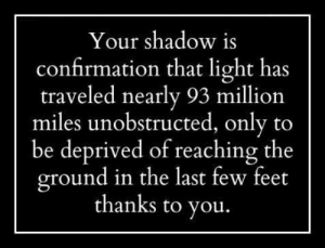 Tumblr, Blog, and Http: Your shadow is  confirmation that light has  traveled nearly 93 million  miles unobstructed, only to  be deprived of reaching the  round in the last few feet  thanks to you srsfunny:Your Shadow