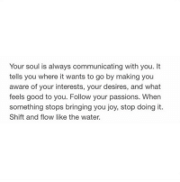 Good, Water, and Joy: Your soul is always communicating with you. It  tells you where it wants to go by making you  aware of your interests, your desires, and what  feels good to you. Follow your passions. When  something stops bringing you joy, stop doing it.  Shift and flow like the water.