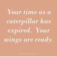 Time, Wings, and Caterpillar: Your time as a  caterpillar has  expired. Your  wings are ready  www.BOHO WEDDINGS.COM