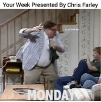 My everday life lmao 😂😂 ( Follow Us @hoodclips ) HoodClips comedy HoodComedy: Your Week Presented By Chris Farley  lg: (a hood clips  MONDAY My everday life lmao 😂😂 ( Follow Us @hoodclips ) HoodClips comedy HoodComedy