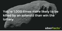 Oh. http://www.cnn.com/2013/12/13/us/mega-millions-jackpot/: You're 1,000 times more likely to be  killed by an asteroid than win the  lottery.  überfacts Oh. http://www.cnn.com/2013/12/13/us/mega-millions-jackpot/