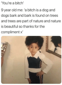 Youre A Bitch: You're a bitch'  9 year old me: 'a bitch is a dog and  dogs bark and bark is found on trees  and trees are part of nature and nature  is beautiful so thanks for the  compliment x'