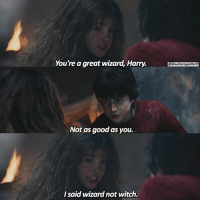 Hermione, Memes, and Good: You're a great wizard, Harry.ootera  @iloveharrypotters  Not as good as you.  I said wizard not witch. = Like & Comment! QOTD: Harry or Hermione? = = 🚂 Follow @typedpotterquotes @bookgasms and @mypotterfacts for more of my posts!