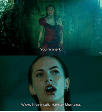 Memes, Hannah Montana, and Headphones: You're a jerk.  wow. Nice insult. Hannah Montana honestly my favourite movie and i'm so happy because i got beats headphones !!! now i can finally charge my phone and listen to music [movie: jennifer's body]