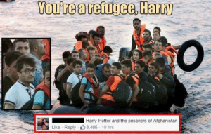 Can't wait for the goblet of goat lol: You're a refugee, Harry  Harry Potter and the prisoners of Afghanistan  Like Reply 8,405 10 hrs Can't wait for the goblet of goat lol