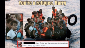 Books, Dank, and Harry Potter: You're a reigee, Harry  Harry Potter and the prisoners of Afghanistan  Like Reply 8.405 10 hrs Anyone read all 7 books? by YoungBoySteezy_1 MORE MEMES