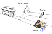 Tag a weeaboo: You're a weeb  Waif us  Real girl Tag a weeaboo