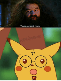 Wizard, Harry, and Youre a Wizard Harry: You're a wizard, Harry.