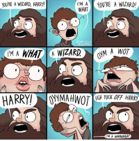 Books, Harry Potter, and Memes: YOURE A WIZARD, HARRY  IM A OU'RE A WIZARD  WHAT  ADAM ELLIS  UGH FUCK OFF HARRY  IM A WHAAAAAT All joking aside, the Harry Potter books got me through some rough times as a teen. #HarryPotter20